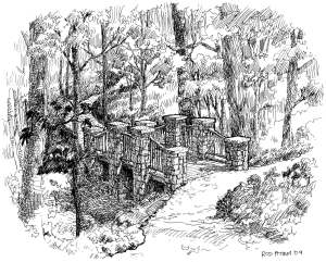 Deepdene Park illustration in pen and ink