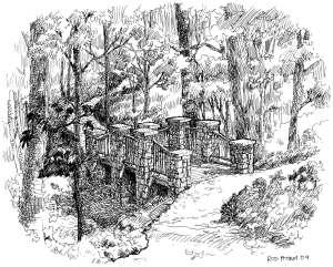 Deepdene Park illustration in pen and ink