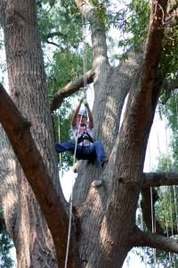Tree climbing with Tree Climbers International on Lake Horton