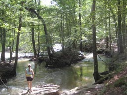 Sweetwater Creek State Park trail running