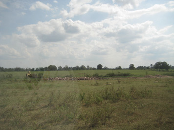 White Oak Pastures' zero waste method with piles of bones set out in a field to decompose