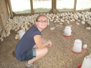 White Oak Pastures raising sustainable chickens in Georgia