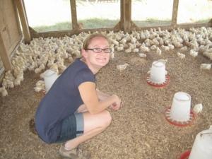 White Oak Pastures raising sustainable chickens in Georgia